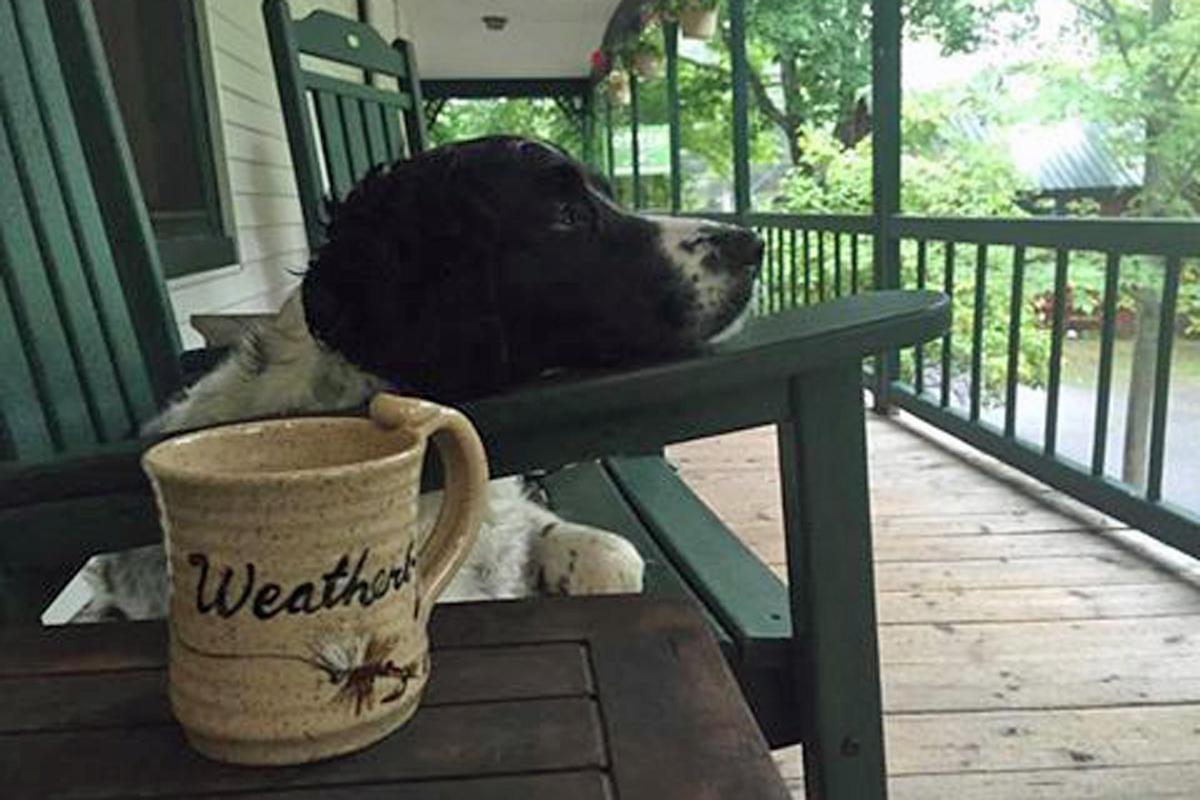 Bridget coffee porch-web