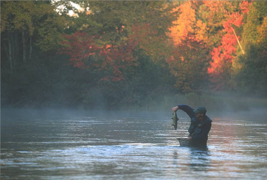 Fall Salmon fishing in Maine