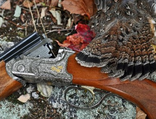 Learn to Upland Hunt