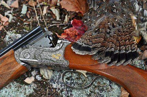 Grouse and Woodcock Hunts